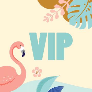 PASS VIP 2J